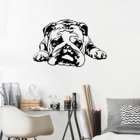 Bulldog wallsticker