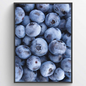 Blueberries - plakat wallsticker