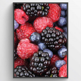 Berries - plakat wallsticker