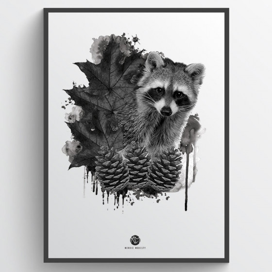 Forest racoon plakat wallsticker