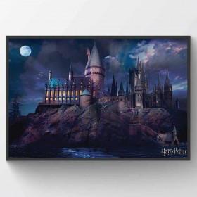 Harry Potter (Hogwarts) Plakat wallsticker