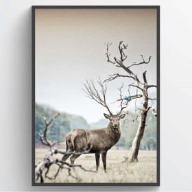 Deer - poster wallsticker