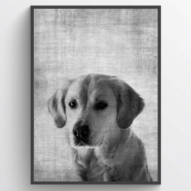 Texture dog - plakat wallsticker